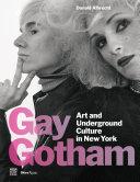 Gay Gotham Book