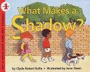 Pdf What Makes a Shadow?