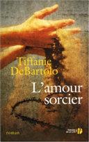 L'amour sorcier ebook