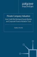 Private Company Valuation Pdf/ePub eBook