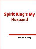 Spirit King s My Husband