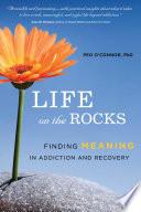 Life on the Rocks
