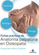Pdf Fichas prácticas de anatomía palpatoria en osteopatía