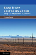 Energy Security along the New Silk Road