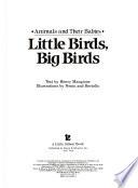 Little Birds, Big Birds