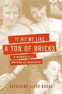 It Hit Me Like a Ton of Bricks [Pdf/ePub] eBook
