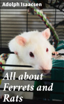 All about Ferrets and Rats