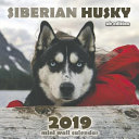 The Siberian Husky 2019 Mini Wall Calendar  UK Edition