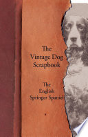 The Vintage Dog Scrapbook   The English Springer Spaniel