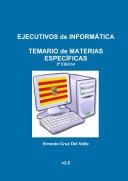 EJECUTIVOS de INFORMçTICA - TEMARIO MATERIAS ESPECêFICAS