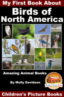 My First Book About the Birds of North America   Amazing Animal Books   Children s Picture Books