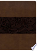 Csb Study Bible Mahogany Leathertouch Indexed