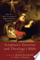 Scripture s Doctrine and Theology s Bible