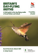 Britain s Day flying Moths