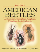 American Beetles  Volume I