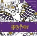Harry Potter  Winter at Hogwarts