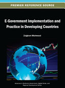 E Government Implementation and Practice in Developing Countries