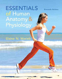 Essentials of Human Anatomy and Physiology Book