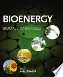 """Bioenergy: Biomass to Biofuels"" by Anju Dahiya"