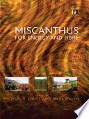 Miscanthus