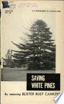 Saving White Pines by Removing Blister Rust Cankers Book