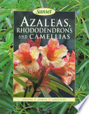 Azaleas, Rhododendrons, and Camellias