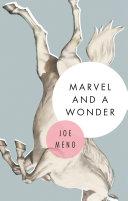 Marvel and a Wonder Pdf