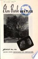 Elm Bark Beetles
