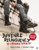 Juvenile Delinquency in a Diverse Society - Seite 458