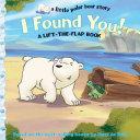 I Found You! Pdf/ePub eBook