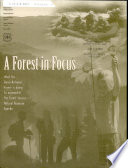 A forest in focus