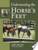 Understanding the Horse s Feet