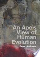 An Ape S View Of Human Evolution