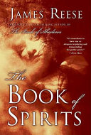 Pdf The Book of Spirits