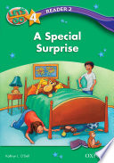 A Special Surprise Let S Go 3rd Ed Level 4 Reader 2  Book