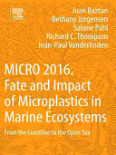 Fate and Impact of Microplastics in Marine Ecosystems
