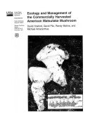 Ecology   Management of the Commerically Harvested American Matsutake Mushroom