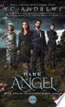 Dark Angel image
