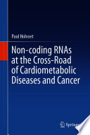 Non coding RNAs at the Cross Road of Cardiometabolic Diseases and Cancer