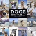Dogs on Instagram