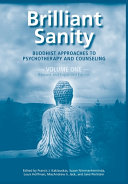 Brilliant Sanity  Vol  1  Revised   Expanded Edition