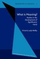 What is Meaning? Pdf
