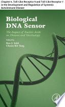 Biological DNA Sensor
