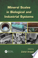 Mineral Scales in Biological and Industrial Systems
