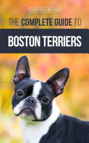 The Complete Guide to Boston Terriers