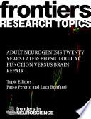Adult neurogenesis twenty years later  physiological function versus brain repair