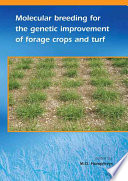 Molecular breeding for the genetic improvement of forage crops and turf