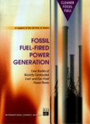 Fossil Fuel-fired Power Generation