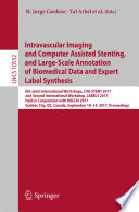 Intravascular Imaging and Computer Assisted Stenting  and Large Scale Annotation of Biomedical Data and Expert Label Synthesis Book
