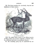 Էջ 227